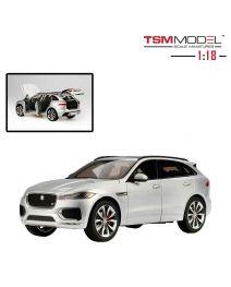 TSM Model 1:18 樹脂模型車 - Jaguar F-Pace Rhodium Silver
